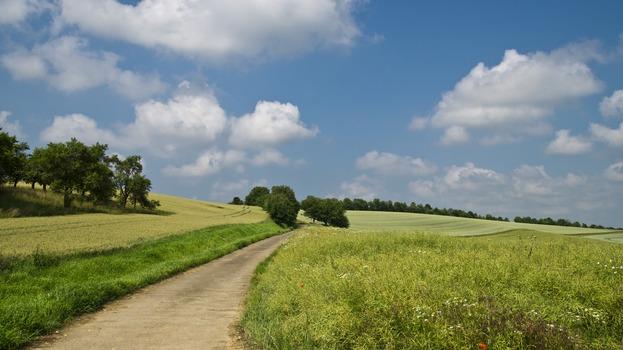 field-away-summer-sky-67211-medium